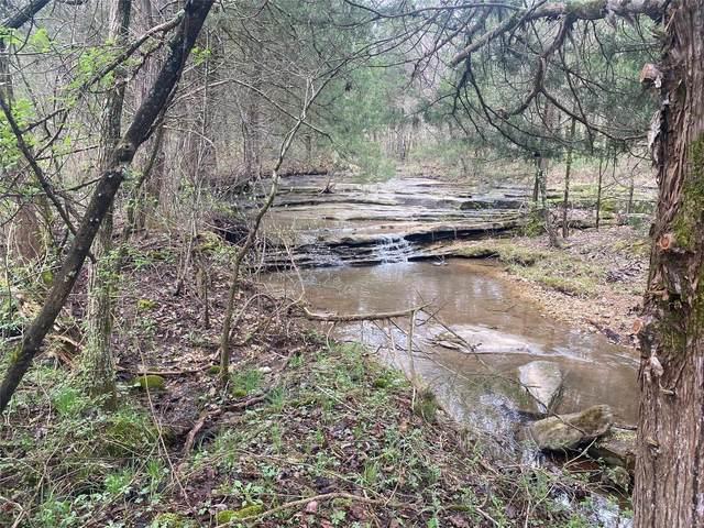 15995 County Road 8240, Rolla, MO 65401 (#20044759) :: Matt Smith Real Estate Group