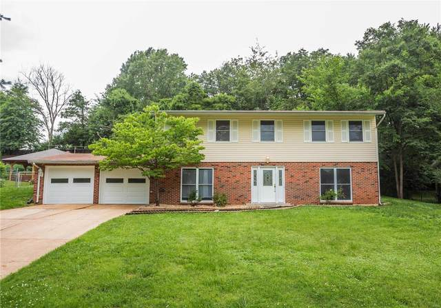 6825 Birdie Ln Lane, St Louis, MO 63129 (#20045341) :: RE/MAX Professional Realty