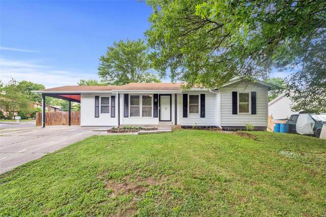 4066 Country Club Drive, Imperial, MO 63052 (#20045460) :: Peter Lu Team