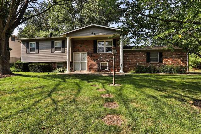 39 Jeffrey Wayne Drive, Saint Peters, MO 63376 (#20045626) :: RE/MAX Vision