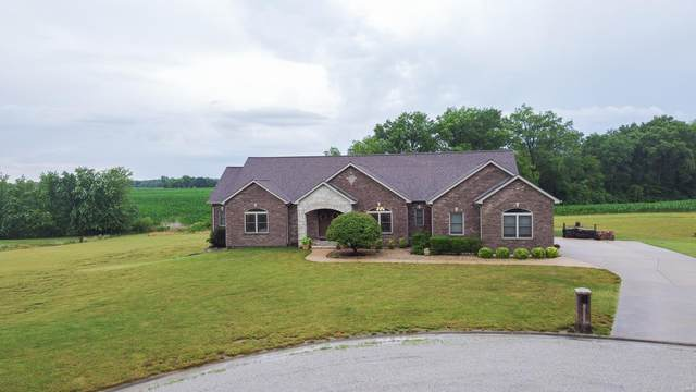 10840 Platinum Lane, Mascoutah, IL 62258 (#20045742) :: RE/MAX Vision