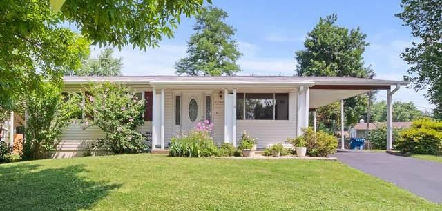 11947 Glenoak Drive, Maryland Heights, MO 63043 (#20047225) :: Parson Realty Group