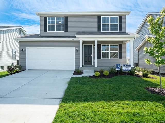 17406 Wyman Ridge Drive, Eureka, MO 63025 (#20047676) :: Parson Realty Group