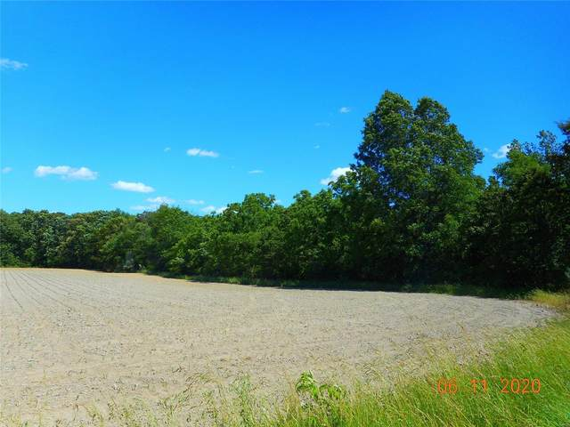 0 Co Rd 325 East, RAMSEY, IL 62080 (#20047903) :: Clarity Street Realty
