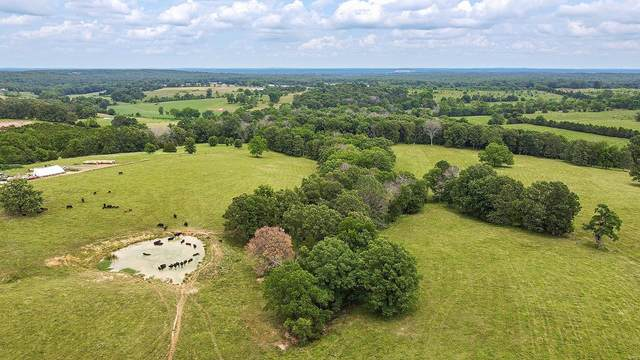 0 35+/- Acres State Route O, Rolla, MO 65401 (#20047920) :: Peter Lu Team