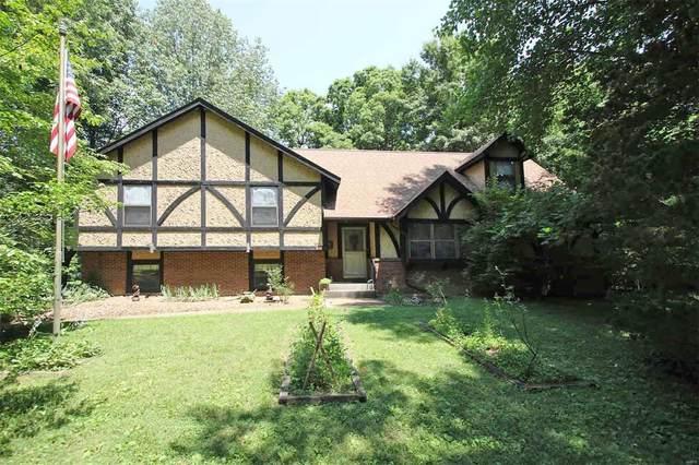 618 Mill Creek Farms Road, Troy, IL 62294 (#20047978) :: Hartmann Realtors Inc.