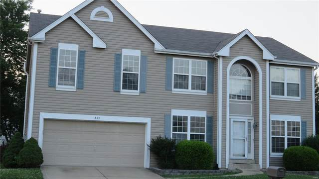 923 Holliday Drive, Fairview Heights, IL 62208 (#20048119) :: Parson Realty Group