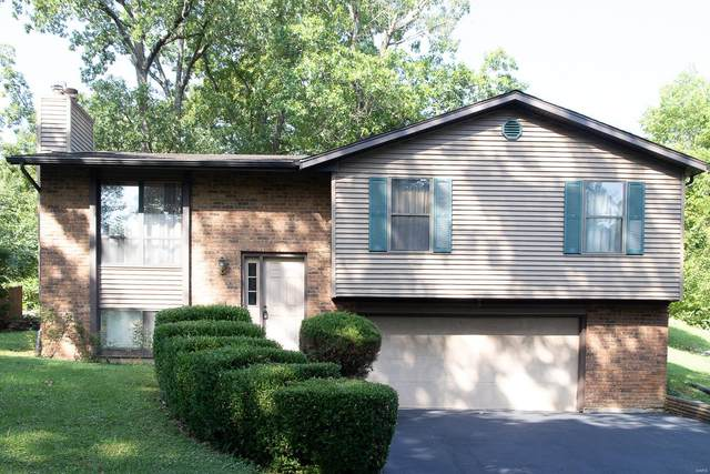 11 Toni Trails Ct, Fenton, MO 63026 (#20048221) :: The Becky O'Neill Power Home Selling Team