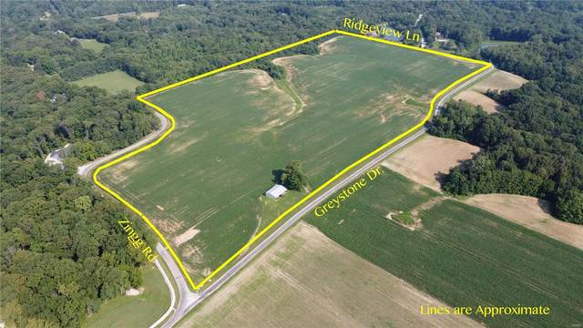 2905 Zingg Road, Millstadt, IL 62260 (#20048324) :: Parson Realty Group