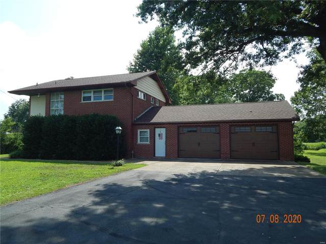 10303 State Route 3, RED BUD, IL 62278 (#20048361) :: Parson Realty Group