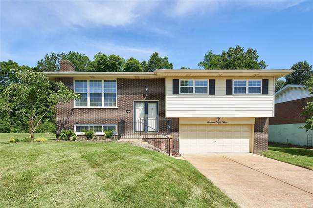 1653 Twin Oaks Drive, Arnold, MO 63010 (#20048582) :: Parson Realty Group