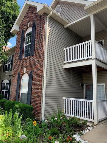 6431 Brookfield Court Drive #205, St Louis, MO 63129 (#20048830) :: Parson Realty Group