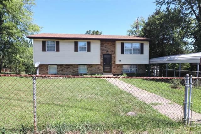 249 Kronos Drive, De Soto, MO 63020 (#20049109) :: The Becky O'Neill Power Home Selling Team