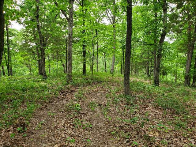 0 4.86+/- Acres Four Wheel Drive, Marthasville, MO 63357 (#20049140) :: Hartmann Realtors Inc.