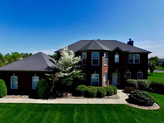 1509 Scoter Court, Swansea, IL 62226 (#20049830) :: Clarity Street Realty