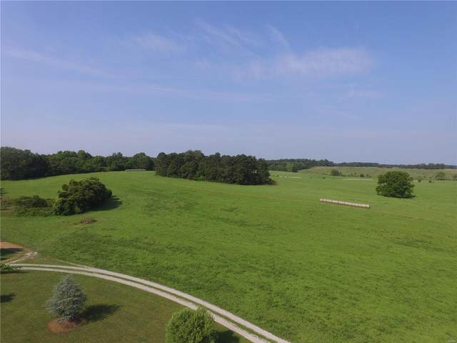 988 County Road 6160, Dora, MO 65637 (#20049865) :: The Becky O'Neill Power Home Selling Team