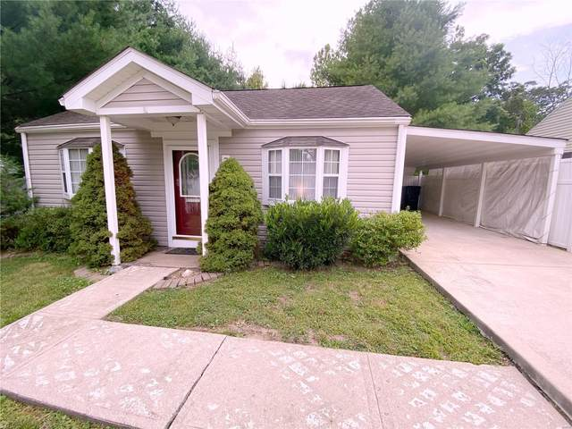 7 Rusty Wil Drive, Belleville, IL 62220 (#20049954) :: The Becky O'Neill Power Home Selling Team