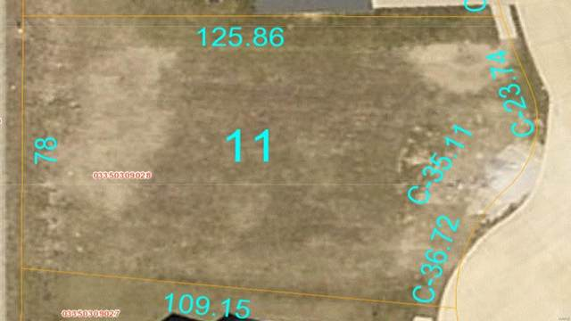 1441 Winchester Grove Court, O'Fallon, IL 62269 (#20050340) :: Parson Realty Group