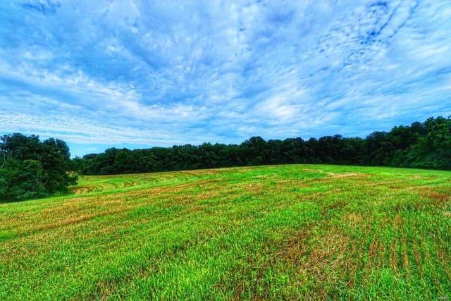 0 151 Acres Timber Ridge Drive, Marthasville, MO 63357 (#20050480) :: Matt Smith Real Estate Group
