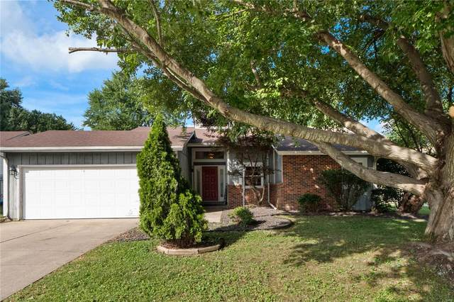 308 Timber Dr, Swansea, IL 62226 (#20050878) :: The Becky O'Neill Power Home Selling Team