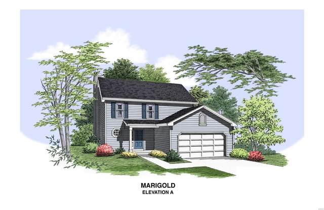 1 Tbb Stonewater-Marigold, Pevely, MO 63070 (#20051162) :: The Becky O'Neill Power Home Selling Team