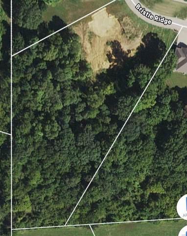 164 Bristle Ridge, Cape Girardeau, MO 63701 (#20051502) :: The Becky O'Neill Power Home Selling Team