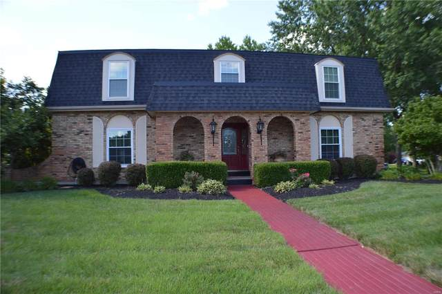 12649 Alswell Lane, Sunset Hills, MO 63128 (#20052102) :: RE/MAX Vision