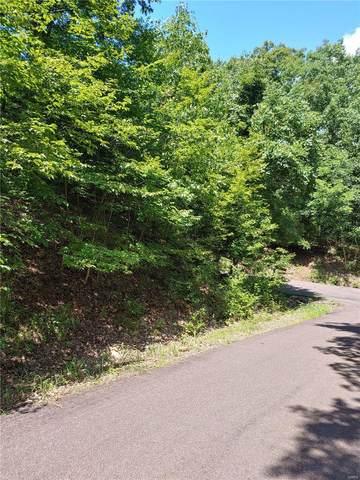 1321 Little John Drive, Marthasville, MO 63357 (#20052785) :: Century 21 Advantage