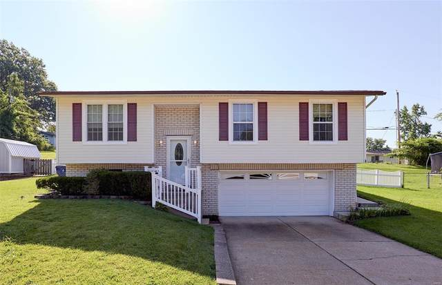 4110 Wenzel Lane, St Louis, MO 63129 (#20053083) :: The Becky O'Neill Power Home Selling Team