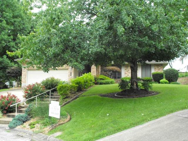 440 Frene Drive, Hermann, MO 65041 (#20053261) :: Parson Realty Group