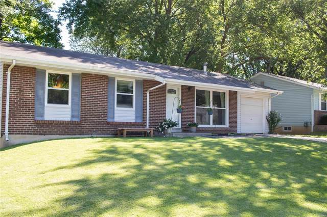 36 Country Hill Road, Saint Peters, MO 63376 (#20053603) :: RE/MAX Vision