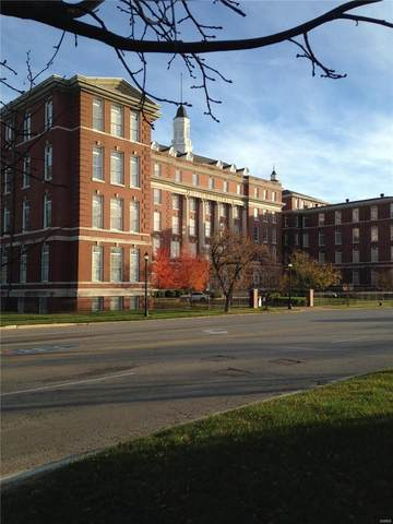 1515 Lafayette Avenue #217, St Louis, MO 63104 (#20053742) :: Realty Executives, Fort Leonard Wood LLC
