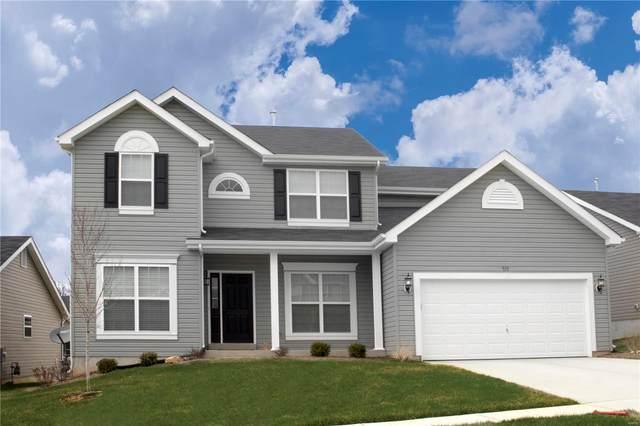 1639 Ridgeway Trail, Fenton, MO 63026 (#20054126) :: The Becky O'Neill Power Home Selling Team