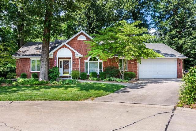 2700 Woods Way, Belleville, IL 62221 (#20054679) :: The Becky O'Neill Power Home Selling Team