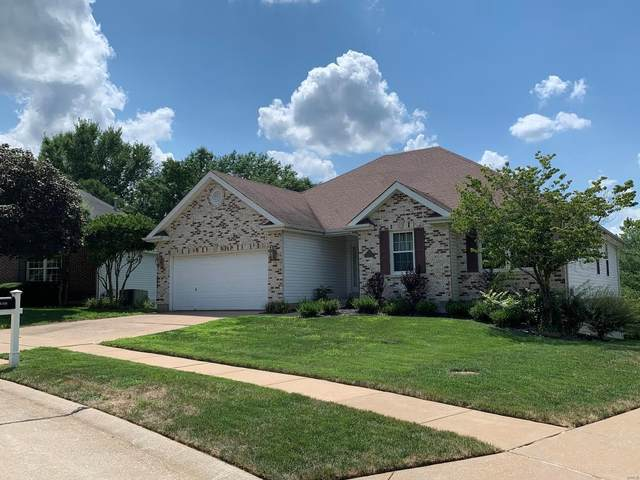 6409 Hagemann Pointe Court, St Louis, MO 63128 (#20055013) :: The Becky O'Neill Power Home Selling Team