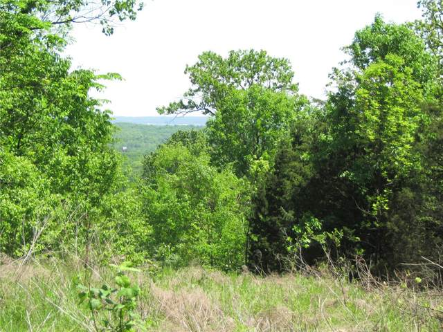 0 Meadow Dr. (89 Acres), Barnhart, MO 63012 (#20055078) :: Peter Lu Team