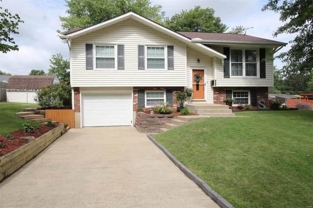 4702 Fantasy Lane, Alton, IL 62002 (#20055139) :: Tarrant & Harman Real Estate and Auction Co.