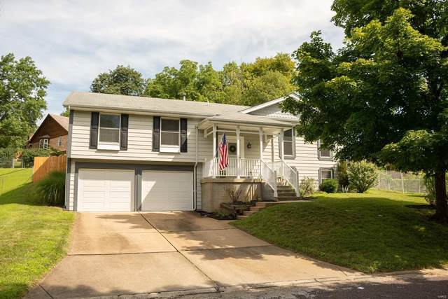 11255 Monte Carlo Drive, St Louis, MO 63126 (#20055314) :: The Becky O'Neill Power Home Selling Team