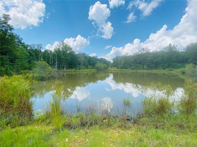 0 29.11 +/-Acres Makenzie Road, Bonne Terre, MO 63628 (#20055317) :: The Becky O'Neill Power Home Selling Team