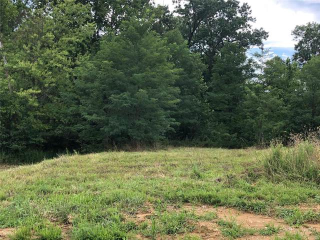 101 Wildflower (Lot #1) Lane, Troy, MO 63379 (#20055344) :: The Becky O'Neill Power Home Selling Team