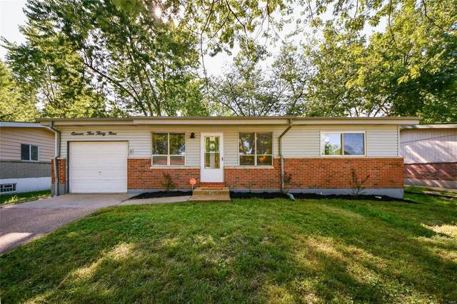 11539 Criterion Avenue, St Louis, MO 63138 (#20055785) :: The Becky O'Neill Power Home Selling Team