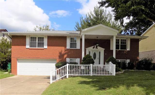 1004 Nancy Drive, O'Fallon, IL 62269 (#20055809) :: The Becky O'Neill Power Home Selling Team