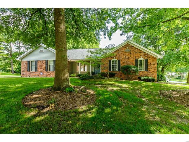18 Pyrenees Drive, Lake St Louis, MO 63367 (#20056201) :: Parson Realty Group