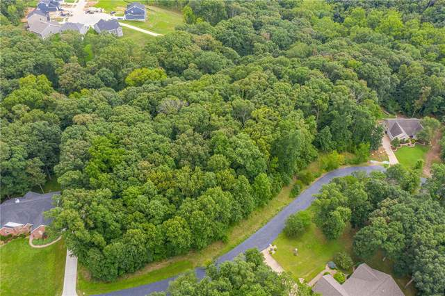 305 Walnut Forest Drive, O'Fallon, MO 63366 (#20056231) :: Kelly Hager Group | TdD Premier Real Estate