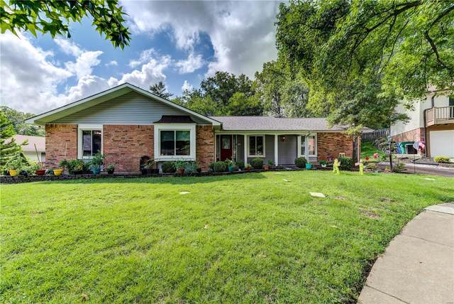 11624 Chieftain Drive, St Louis, MO 63146 (#20056496) :: The Becky O'Neill Power Home Selling Team