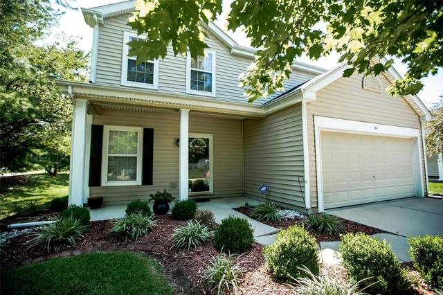 1710 Ambrose Terrace Drive, Swansea, IL 62226 (#20057113) :: The Becky O'Neill Power Home Selling Team