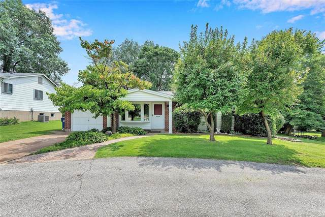 12198 Mckelvey, Maryland Heights, MO 63043 (#20057364) :: St. Louis Finest Homes Realty Group