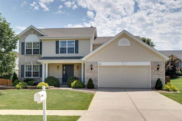 43 Lias Court, Wentzville, MO 63385 (#20057524) :: Parson Realty Group