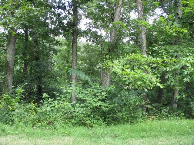 2 Deer Trail, Fredericktown, MO 63645 (#20057788) :: The Becky O'Neill Power Home Selling Team
