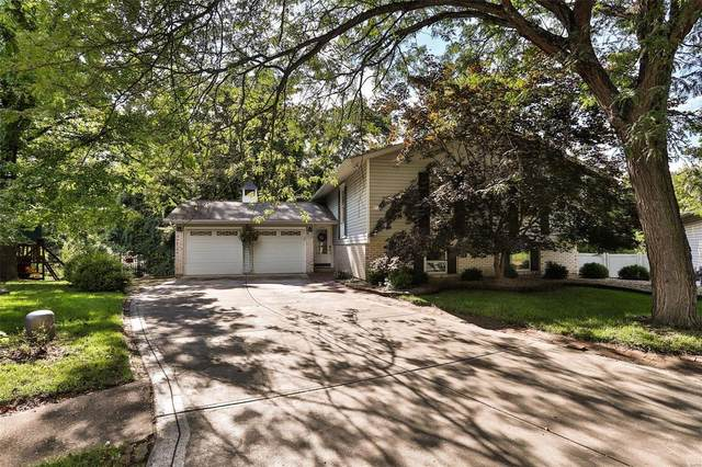 12270 Spring Shadow Court, Maryland Heights, MO 63043 (#20057837) :: The Becky O'Neill Power Home Selling Team